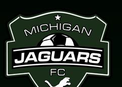 Michigan Jaguars 02 Green