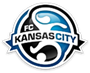 FC Kansas City Forte Elite